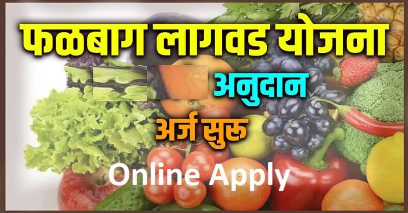 Maharashtra Falotpadan Yojna 2020 21
