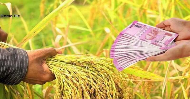 crop loan requirement