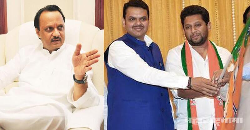 NCP, bjp maharashtra, ajit pawar, sujay vikhe patil, sharad pawar, election 2019