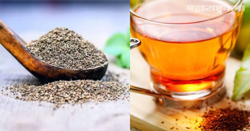 Ajwain water, cold and cough, Health Fitness, Marathi News ABP Maza