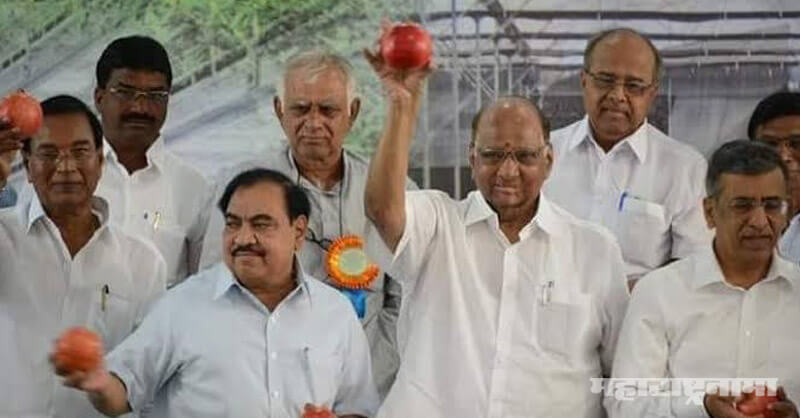 Eknath Khadse, joining NCP, BJP office in jalgaon Muktainagar
