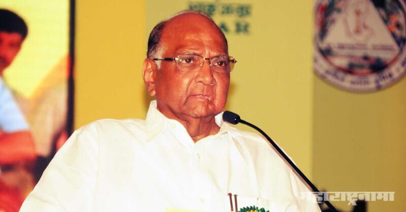 NCP, Sharad Pawar, Congress, Shivsena