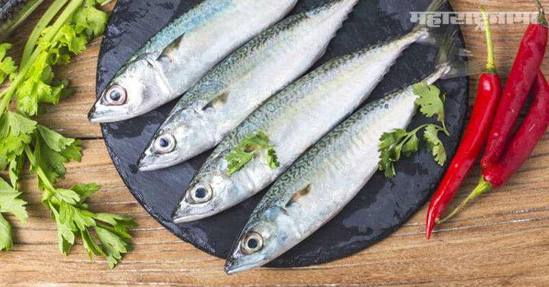 Eating fish, beneficial, health article