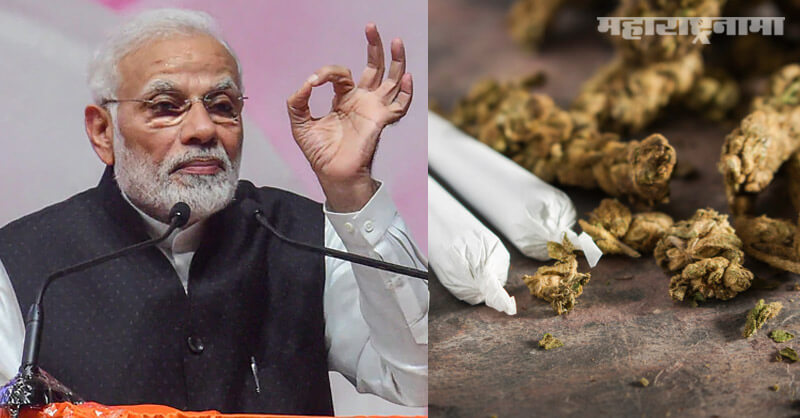 United Nations, Cannabis, Not a dangerous narcotic, India Support