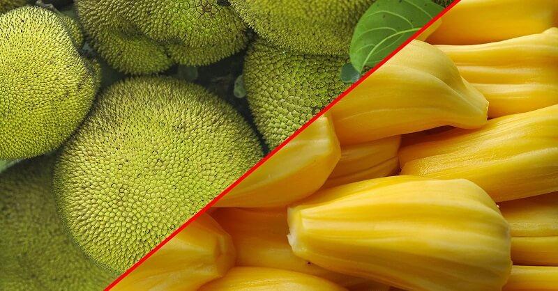 Health benefits, Jackfruit, health article