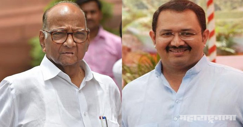 Sharad Pawar, big game, Mohite Patil father and son, BJP