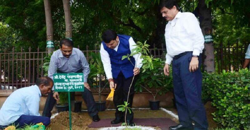 Plantation program, Ajit Pawar, Announces probe, Devendra Dadnavis