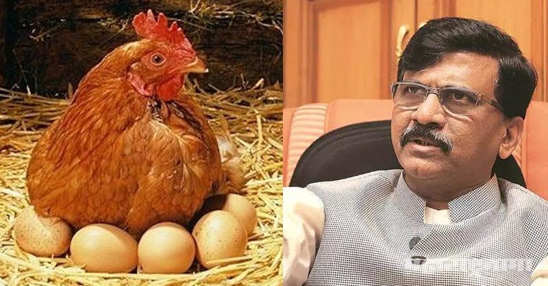 Sanjay Raut, MP Sanjay Raut, Shivsena MP sanjay Raut, Hens, Eggs, vegetarian Eggs, vegetarian Hens