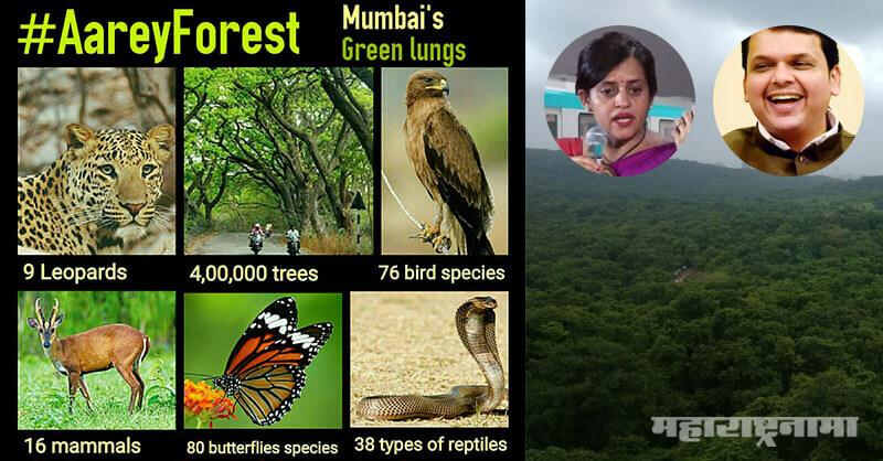 Mahavikas Aghadi, Save Aarey forest, Relocating Metro Car Shade, Kanjurmarg