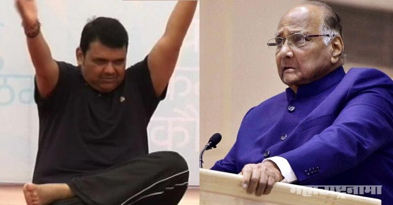Sharad Pawar, CM Devendra Fadnavis, Wrestler Remark