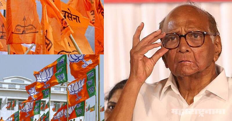 NCP, Shivsena, BJP Maharashtra, Sharad Pawar, Ajit Pawar, Maharashtra Assembly Election 2019