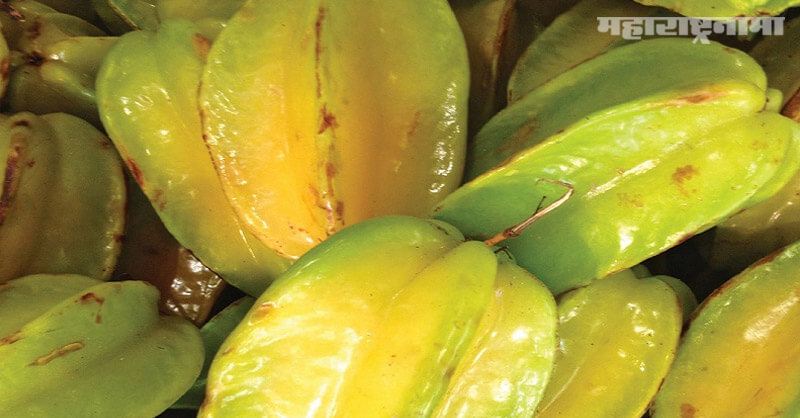 Star fruit, vitamin B, vitamin C,  Health benefits