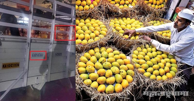 Devgad Mango, Karnataka Mango