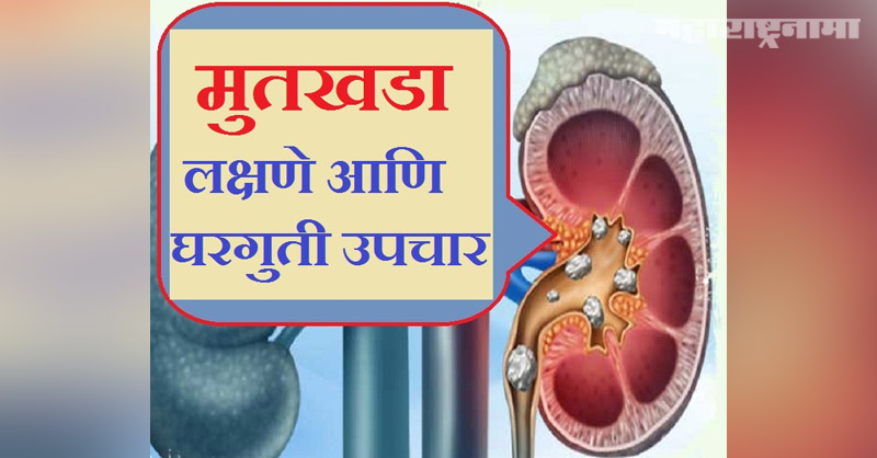 Types of kidney stone, home made solutions, Health Fitness, Marathi News ABP Maza